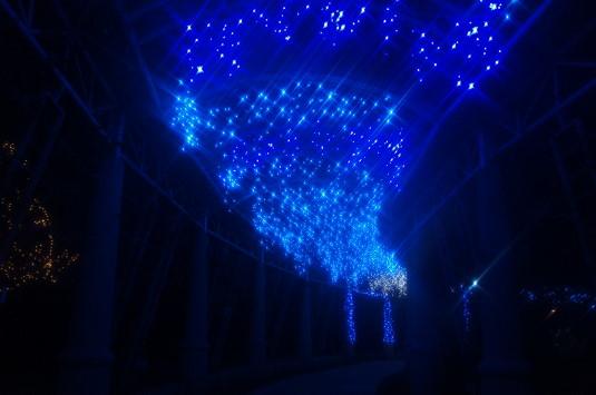 イルミネーション ハイジの村 バラの回廊