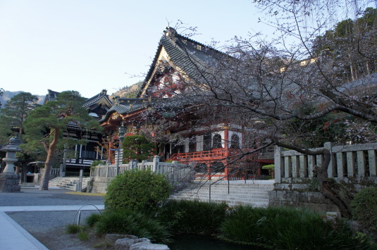 紅葉 久遠寺 桜と寺