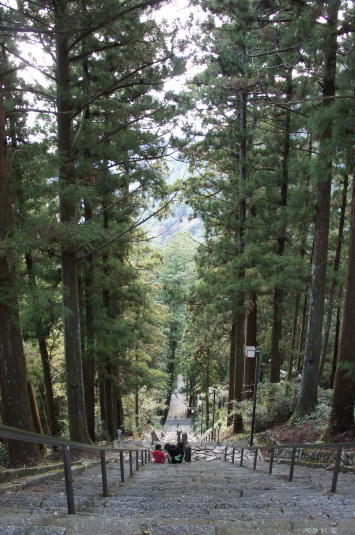 紅葉 久遠寺 階段