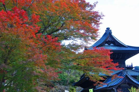 紅葉 久遠寺 山門と紅葉