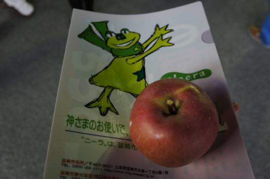 イルミネーション 韮崎駅 りんご