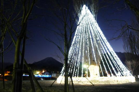 イルミネーション 大池公園 富士とツリー