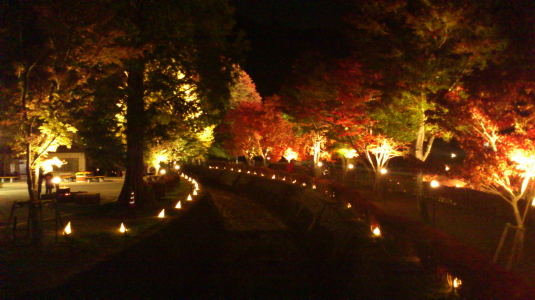 紅葉 河口湖 ライトアップ 外観