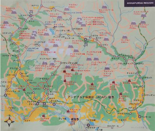 ABC地図