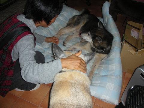 龍馬・20102