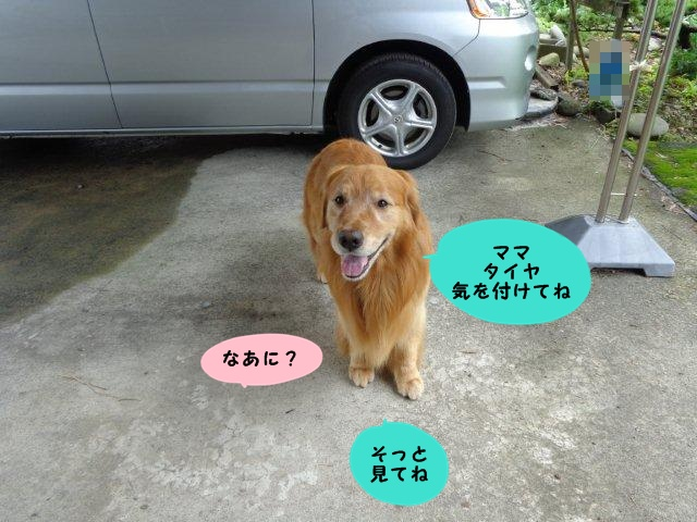 004_20130719205840.jpg