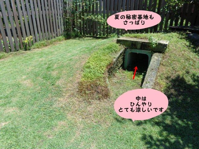 004_20130720141542.jpg