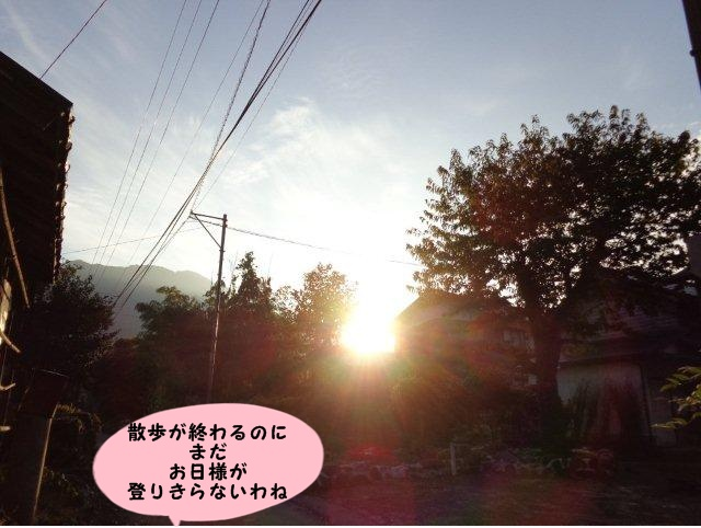 004_20131101204415e70.jpg