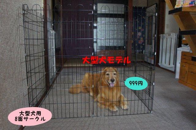 006_20130624200957.jpg