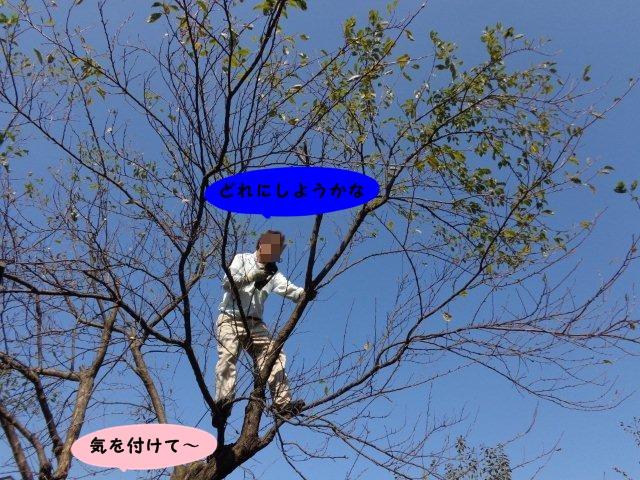 016_20131014202130d21.jpg