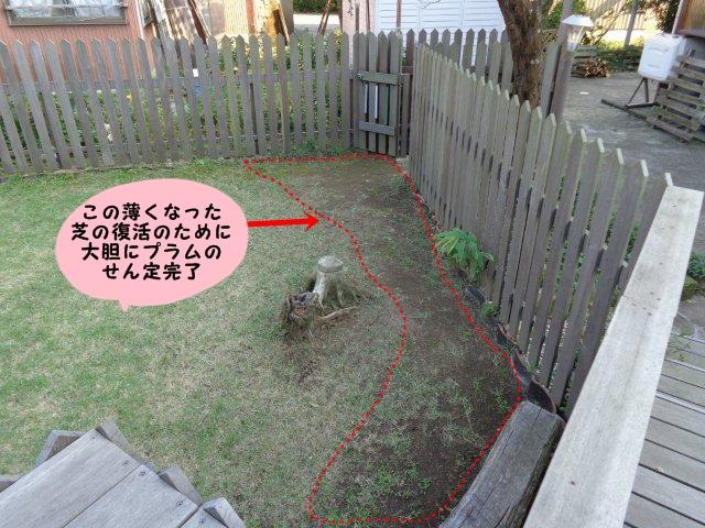 022_2013101420213631d.jpg