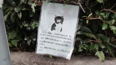 131206内宮 (33)_R