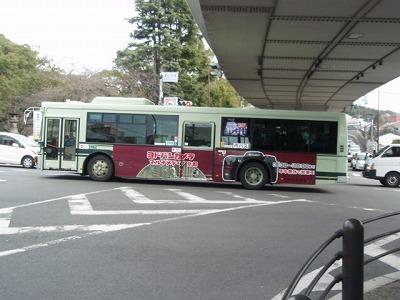 P1040244.jpg