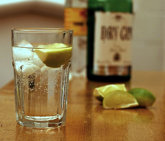 561px-Gin_and_Tonic_with_ingredients.jpg