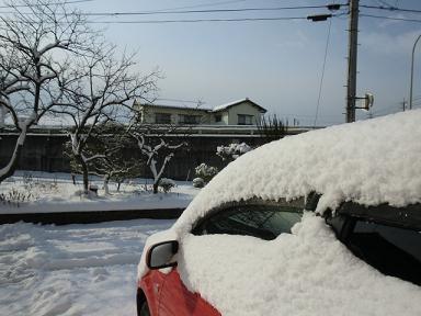 2月21日雪1