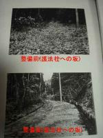 P3230001.jpg