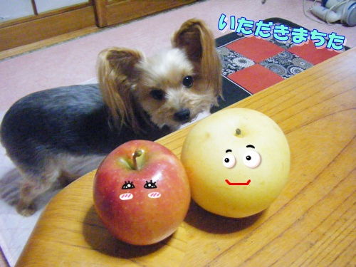 梨さんとりんごさん
