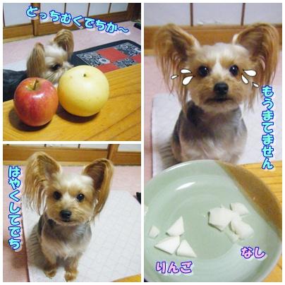 梨さんとりんごさん1