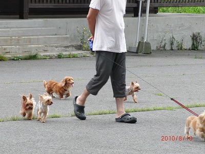 2010戸隠 023