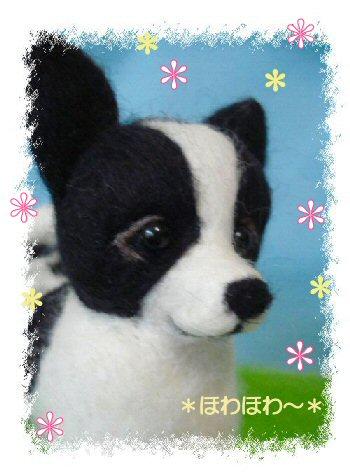 コロンちゃん御人形5