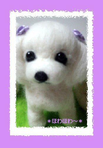 ジュリーちゃん紫の耳飾り