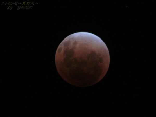 0977皆既月食111210