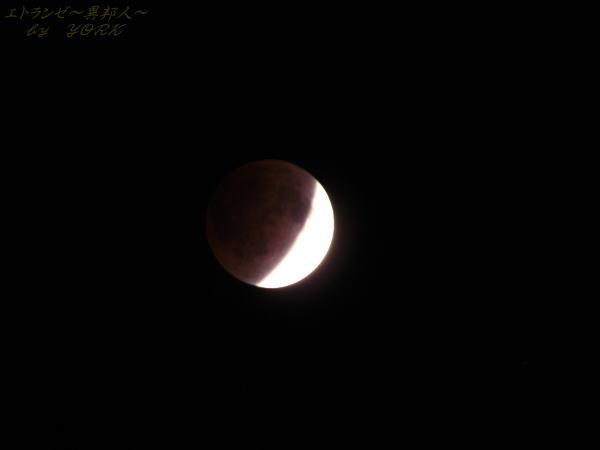 0951月蝕111210