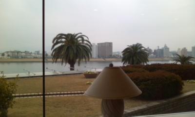 大淀川河畔