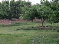 H250726白山草刈り