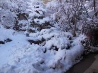 H251220大雪の冬を予感