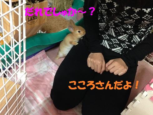 IMG_2206.誰?