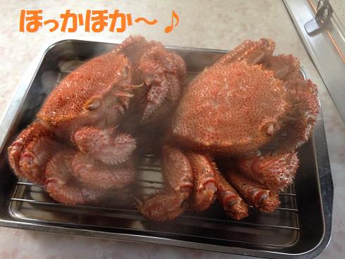 IMG_3276.毛ガニ
