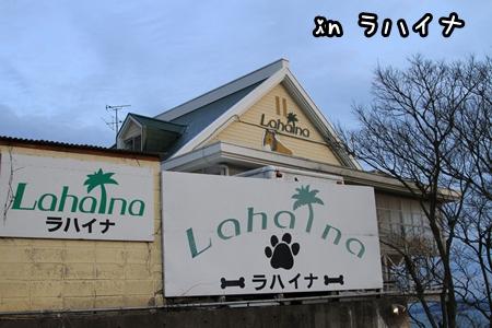 20130224(8).jpg