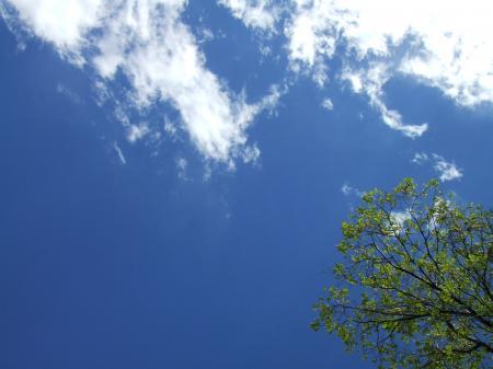 santa+fe+life+006_convert_20110505154042.jpg