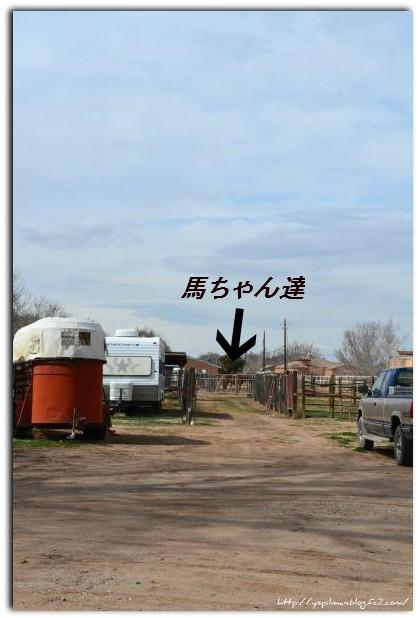 santa+fe+life+2012+003_convert_20120306090023.jpg