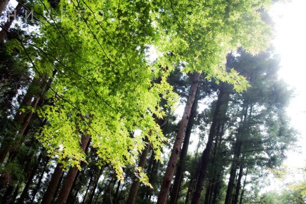 2010-09-09_1031.jpg