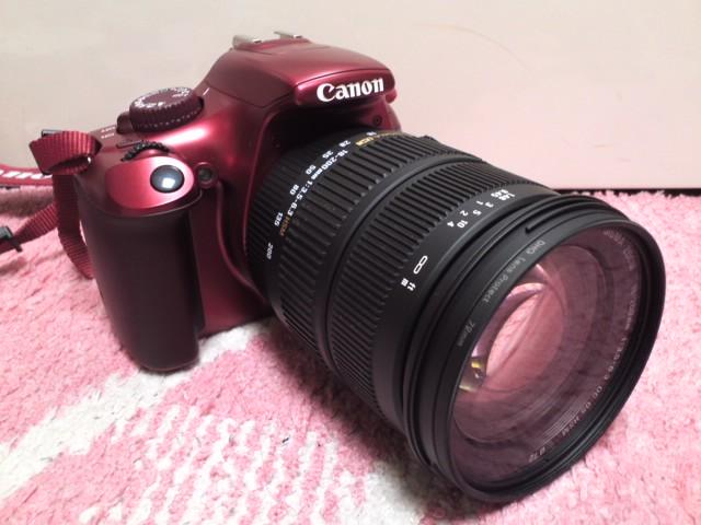 Canon EOS Kiss X50+望遠レンズ(SIGMA)