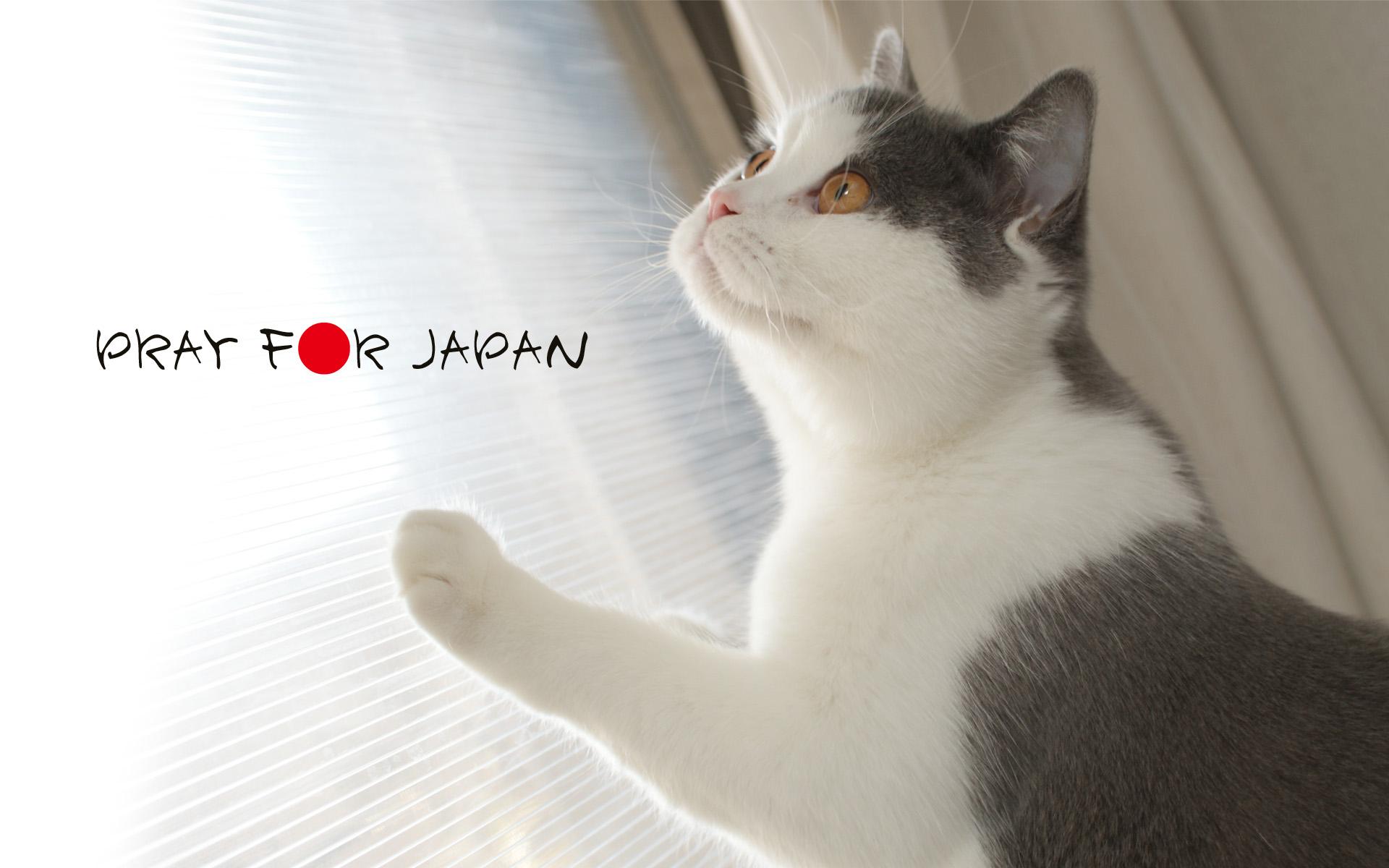 PRAY F●R JAPAN