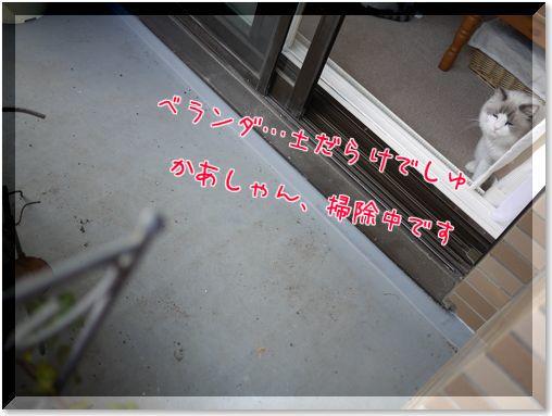01-2-iVz025FpcPDk_851417528205_1417528314.jpg