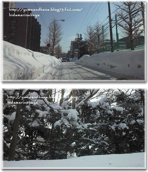 1-札幌の雪道路130216