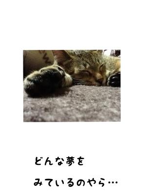 fc2blog_201301181703067d2.jpg