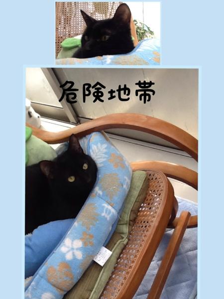 fc2blog_20130120124235339.jpg
