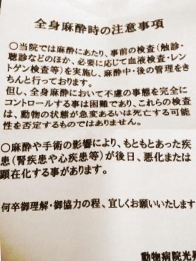 fc2blog_20140122121459c13.jpg