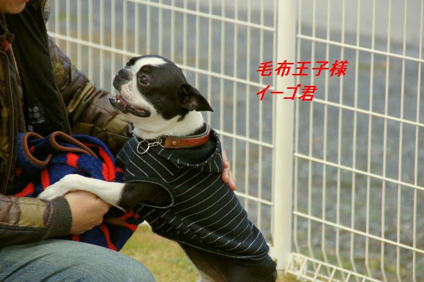 11_20111124101931.jpg