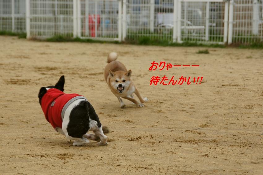 20_20111124102907.jpg