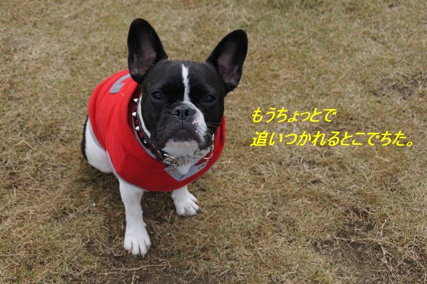 22_20111124102905.jpg