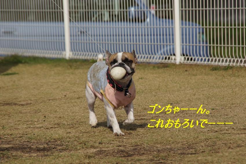 2_20111124100658.jpg
