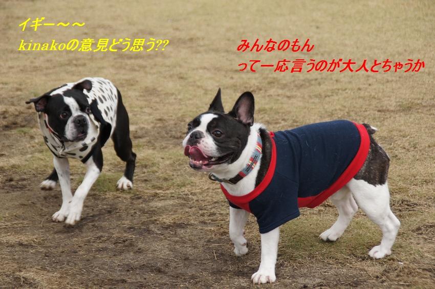 7_20111124100748.jpg