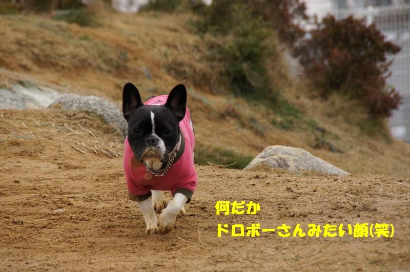 7_20130218162535.jpg