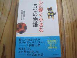 IMG_8425.jpg